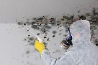 Wet Basement Repair